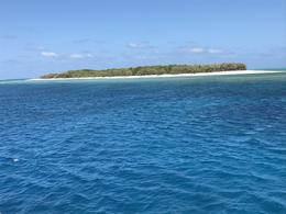 Lady Musgrave Island , Mary n - January 2017