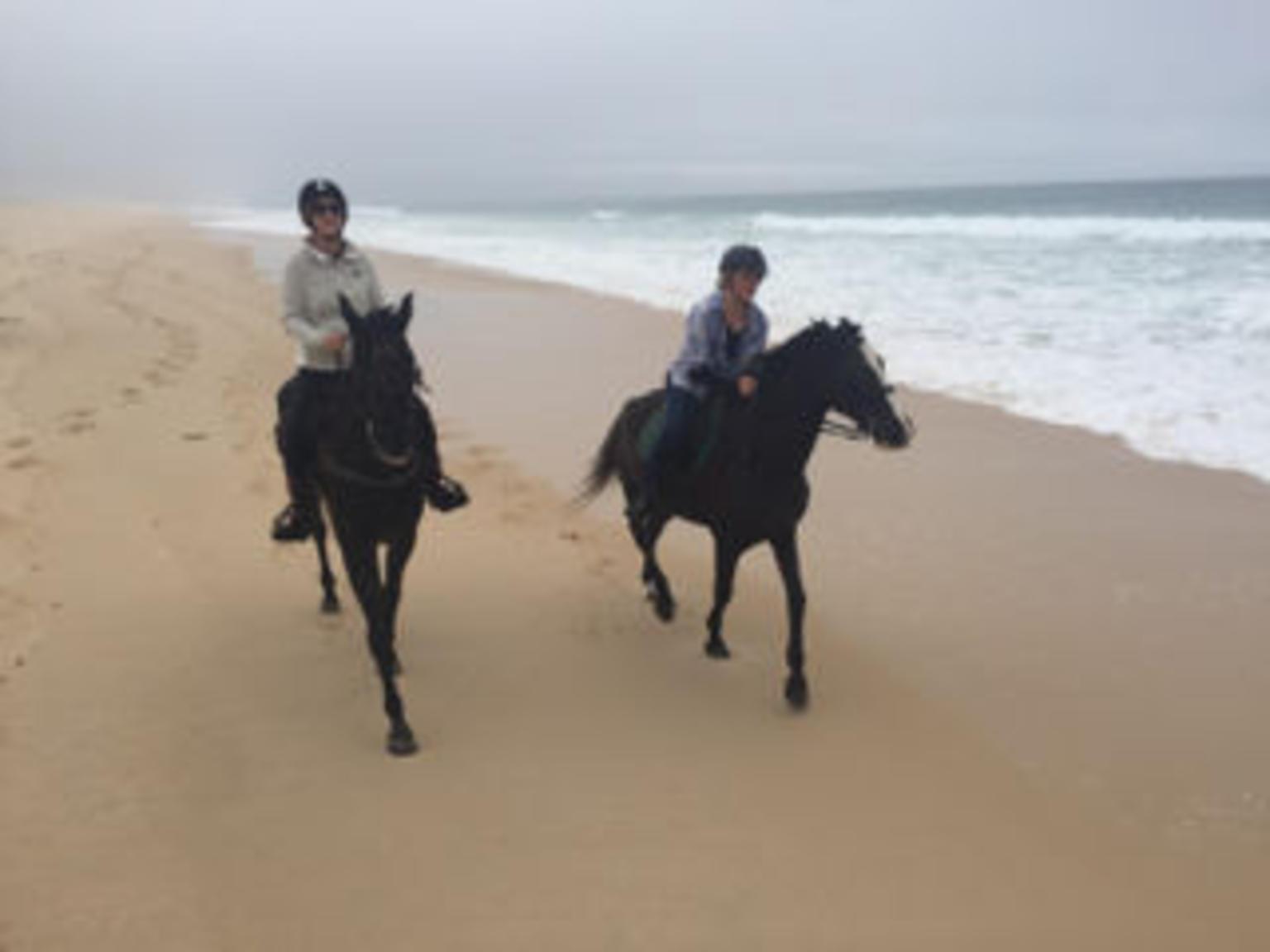 MÁS FOTOS, Horse Riding Tour on the Beach Lisbon region