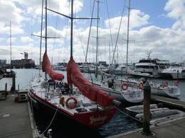 Auckland yacht marina. , Jay - January 2018