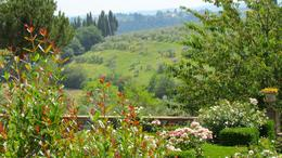 View from the winery , Sid M - June 2012