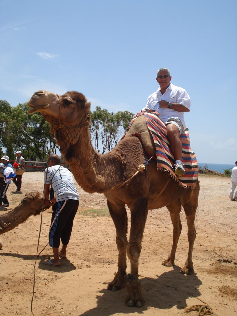 Camel riding in Morocco - Costa del Sol