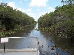 Everglades Airboat Tour , Gary M - July 2015