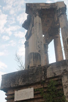 Vestal virgins temple ruins , Lauren C - October 2014