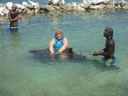 holding the shark in dolphone cove,jamaica. , helen d - November 2012