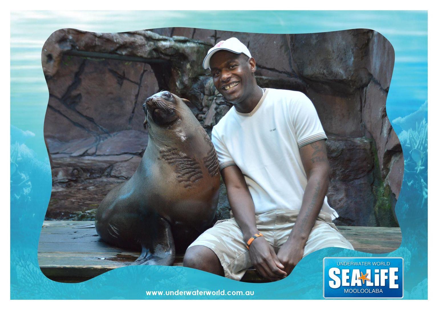 MÁS FOTOS, SEA LIFE Sunshine Coast Aquarium Entrance Ticket