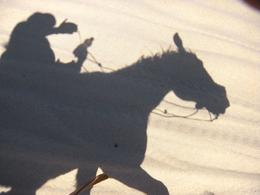 A perfect silhouette of my horse. - March 2010