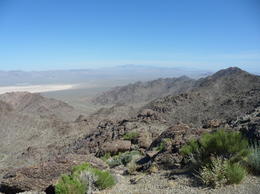 The Dry Lake Bed, CoyoteLovely - June 2011