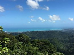 Yokahu Tower view , Magdalena Z - March 2015