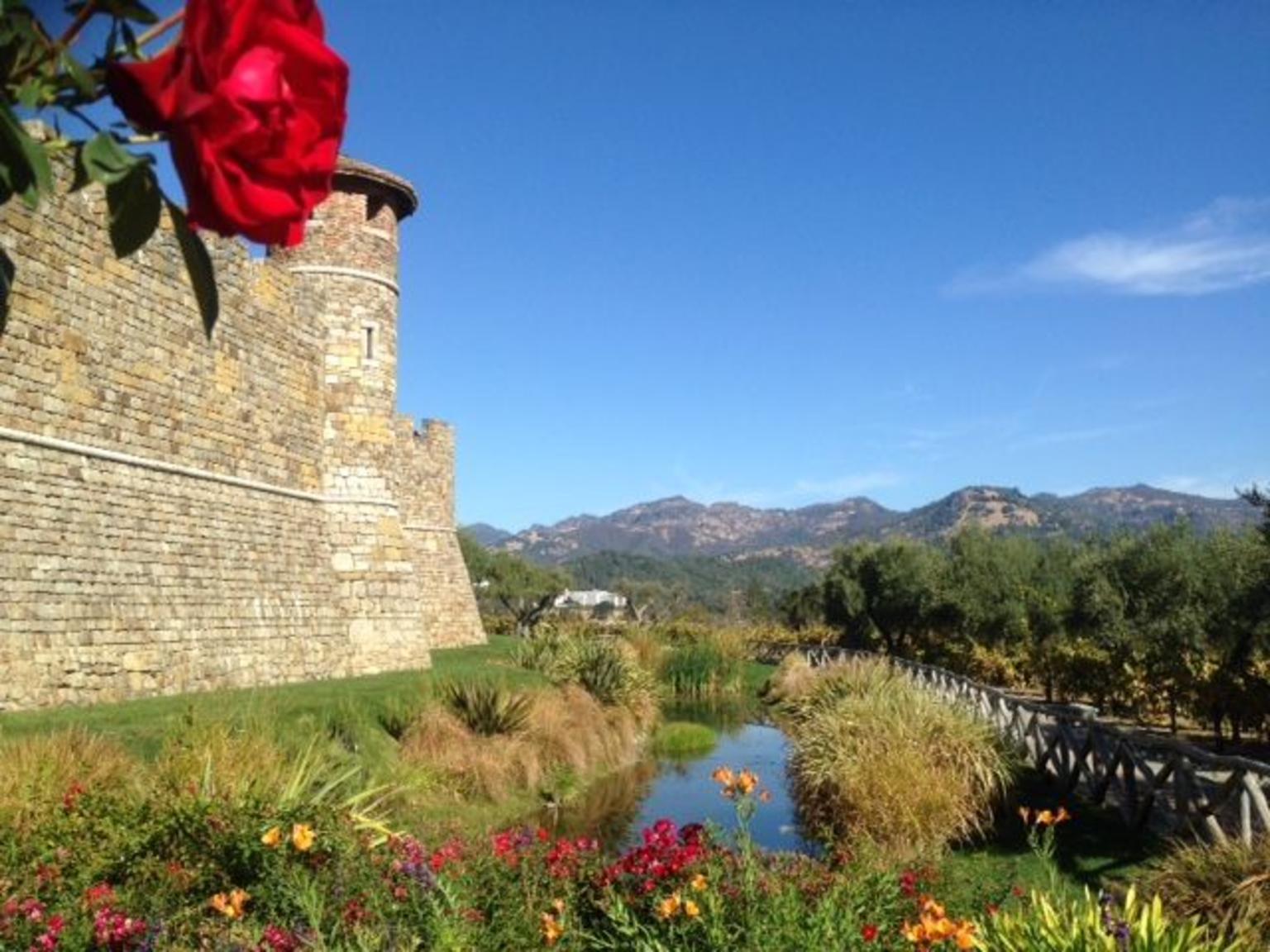MÁS FOTOS, Napa and Sonoma Combo Wine Tour Including Castello Di Amorosa Winery
