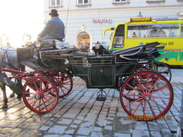 These horse drawn carriages give a real feel of what it must have been like travelling near the Hoffburg during C19 - not a cheap experience, however! , Elizabeth J - November 2011