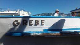 vieux bateau mis à disposition ne correspond pas aux dires de la vente , brigitte l - July 2016