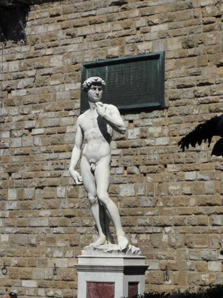 Preview of the Real David - Florence