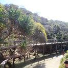 All-Inclusive Fraser Island Day Tour, Hervey Bay, Austrália