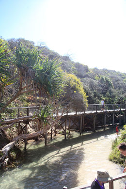 Eli Creek , Andrew B - October 2015