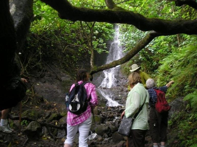 Falls - Oahu