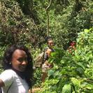 Aventura de día completo en la selva y cataratas desde San Juan, San Juan, PUERTO RICO