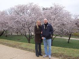 Anne and Mark at the basin, peak cherry blossom time, Washington DC., Jan P - April 2008