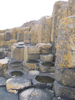 Giants Causeway , Ashley H - March 2011
