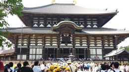 Approaching the massive Todaiji, one can't help but feel reverence and realize that Godzilla isn't the only huge object to spring from Japanese culture. According to the guides, this temple is the ... , Gerald B - June 2016