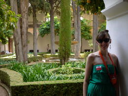 Under and orange tree, Laura All Over - August 2014