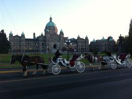Horse Carriage – At Sunset in front of the Government Building next to the Harbor., Travel61 - August 2011