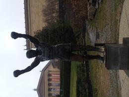 Rocky Statue , Joyce M - January 2017