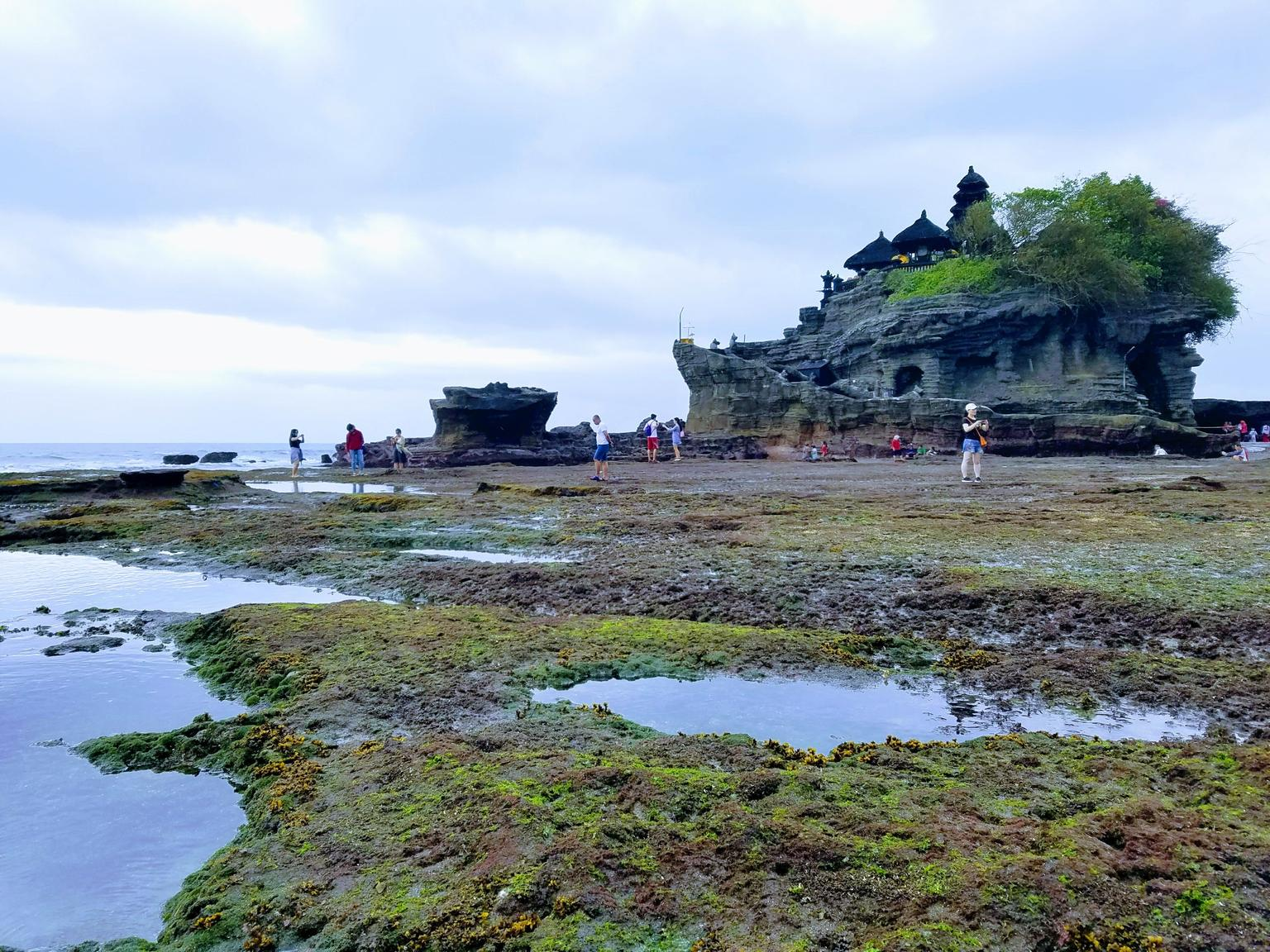 MORE PHOTOS, Private Tour: Ubud and Tanah Lot Day Tour
