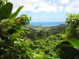 A view of Kaneohe from the top of a mountain - July 2009