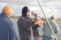 the newbie catch of the day.. not sure what kind of fish that was but i bet it tastes delicious - December 2014