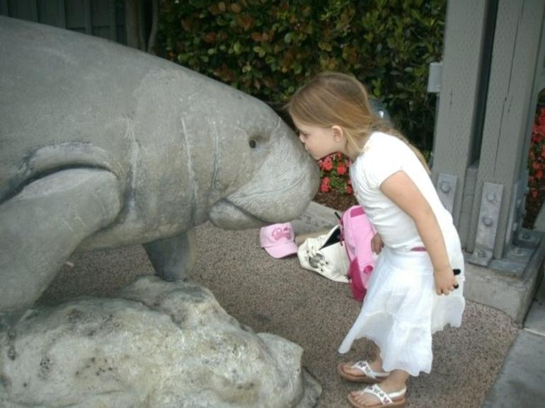 kiss for the manatee -