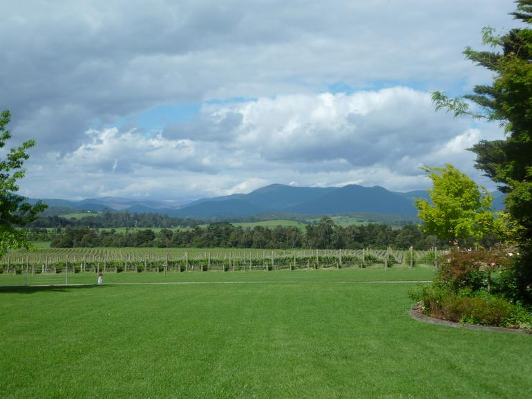 Moet - Chardon Winery, Yarra Valley - Melbourne