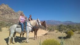 Our Horses!, karleen - October 2015