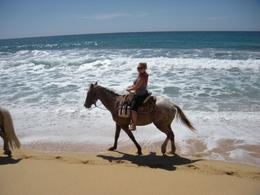 Enjoying horseback riding right on the water. - March 2010