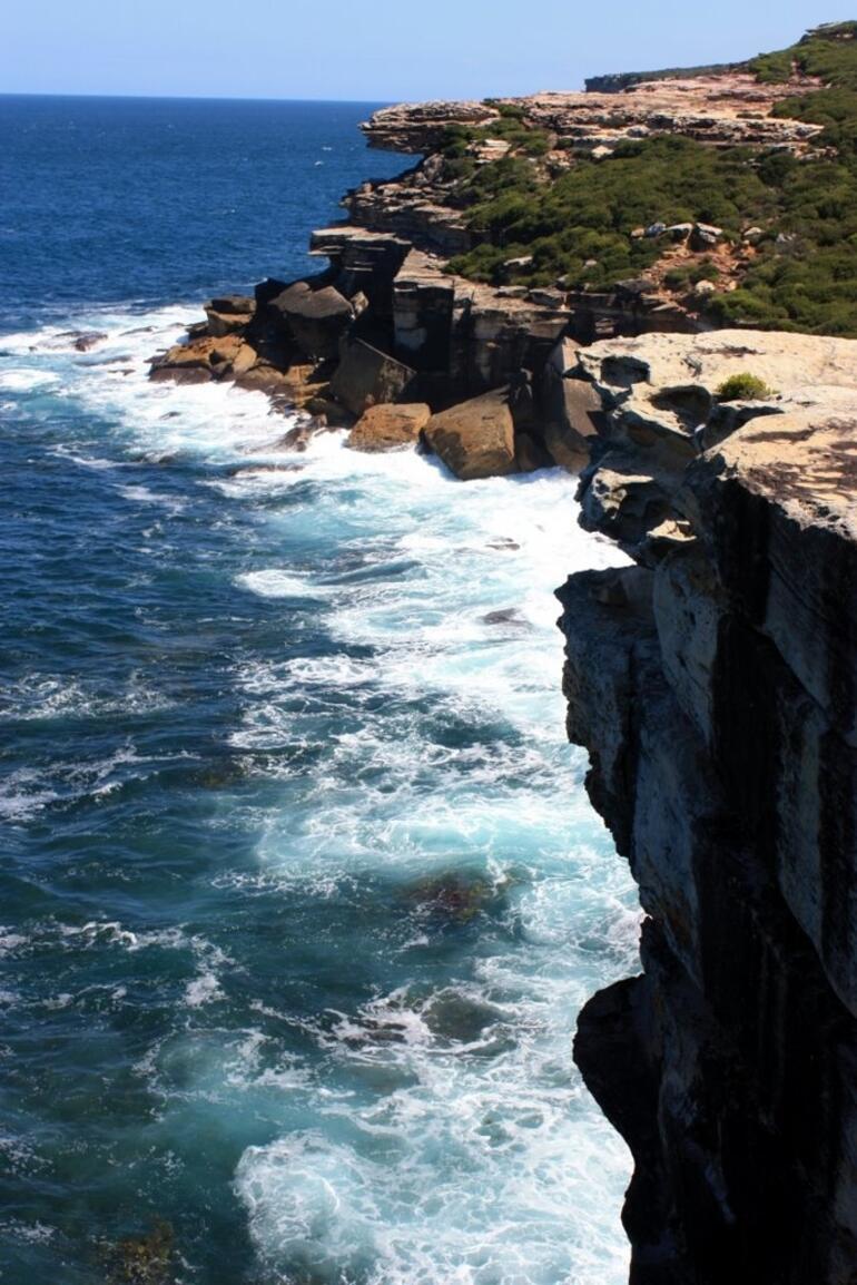 Royal National Park -