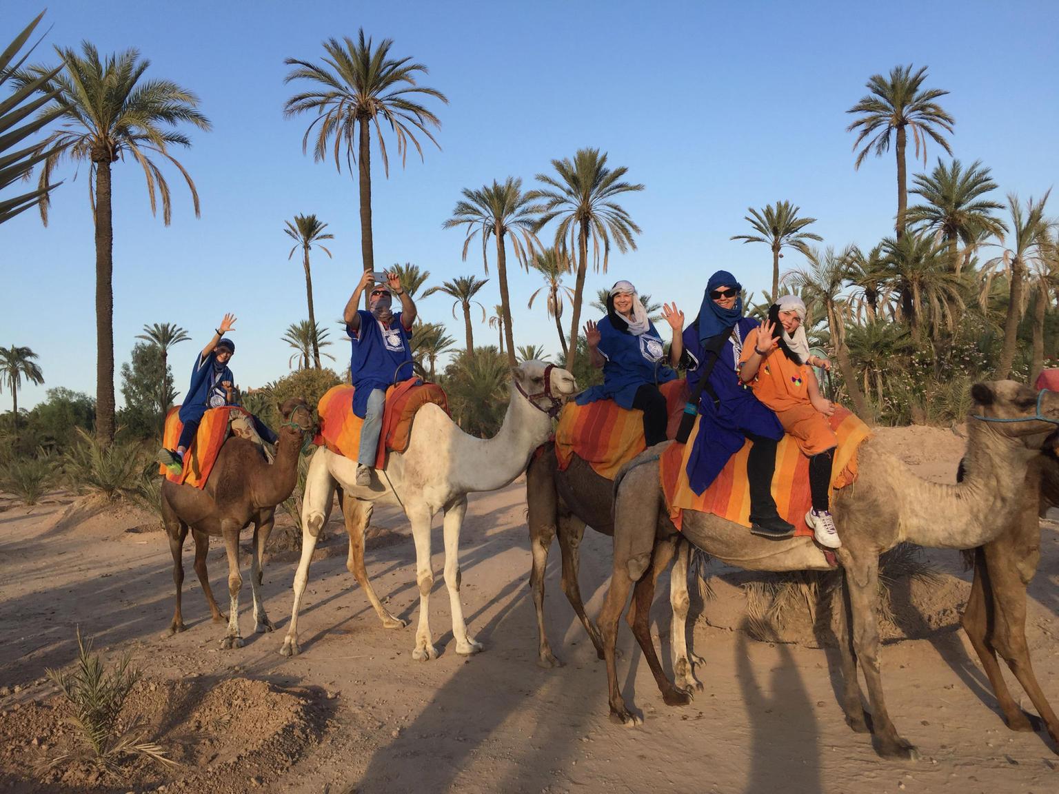 MAIS FOTOS, Jardim de Majorelle e Passeio de Camelo em Marraquexe