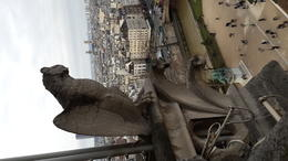 From top of Notre dame near a gargoyle... , Aydan Y - January 2014