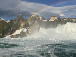 Rhine Falls , Jo-Ann C - September 2015