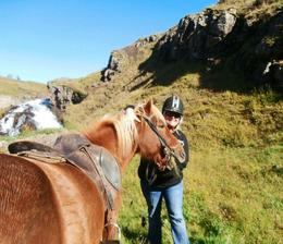Sweet horses! Gorgeous countryside! , KRISTEN H - October 2012
