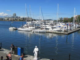 Victoria Harbor , Sheryl K T - August 2017