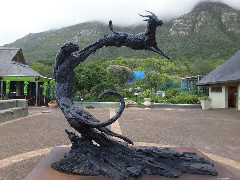 Cape Peninsula Tour from Cape Town photo 16