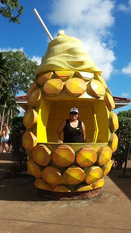 At one of our main stops... Dole Plantation. The dole whip is amazing, a must have. , Jeraldine G - August 2016