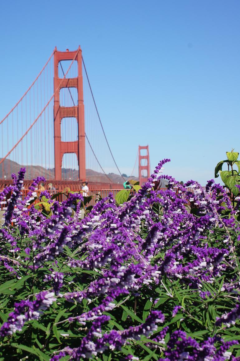 DSC01537 - San Francisco