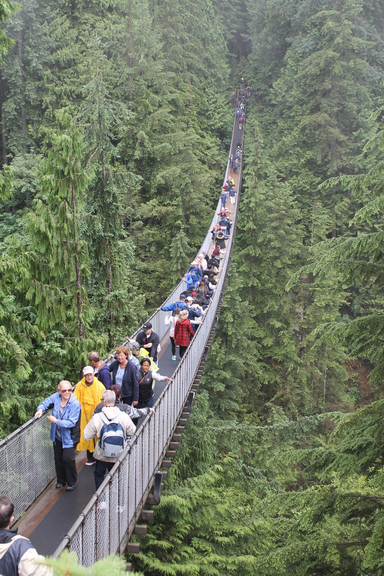 Skip the Line:Capilano Suspension Bridge Park Ticket w/Shuttle from Vancouver photo 25