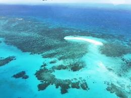 Simply amazing. The day trip to Green Island was also nice. I did the glass bottom boat and the submarine. I did not expect to get sick but I did, but I still did it. It was the getting out of the..., Emerald P - October 2016