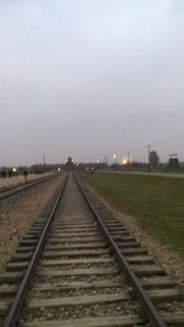 Track at Birkenau , Lila A - November 2015