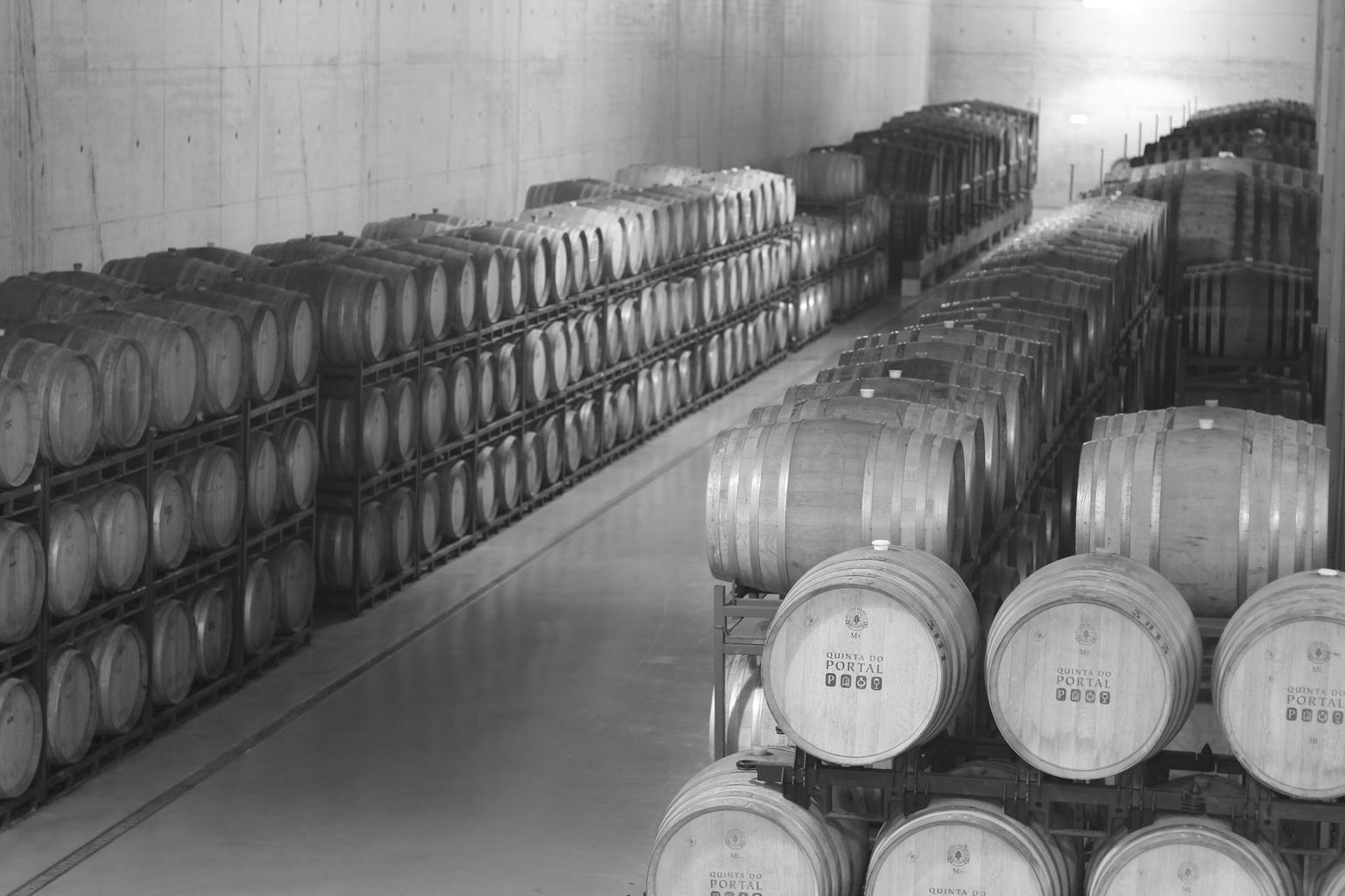 MÁS FOTOS, Tour Completo del Vino del Valle del Duero con Almuerzo, Degustaciones y Crucero por el Río