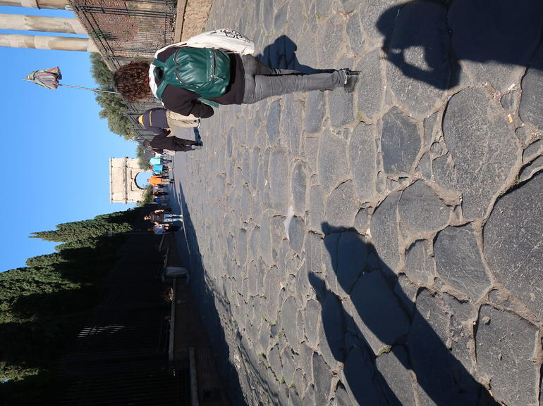 Group or Private Tour of the Colosseum Including Roman Forum and Palatine Hill photo 20