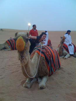 Getting ready to ride with the camels..., Dominique - September 2011