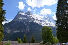 Jungfrau from Grindelwald , Fabio M - June 2013