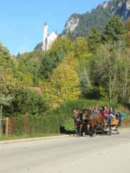 Horse drawn carriage at Neuschwanstein, Linderhof , angela r - November 2017